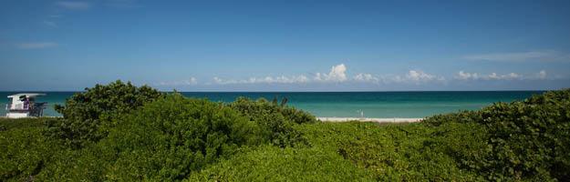 Miami Image